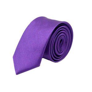4e0f411164f04 Cravate homme violet - Achat / Vente pas cher