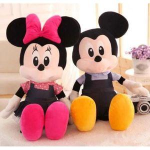 PELUCHE POUR ANIMAL  VOLIBEAR ® 2 Pcs  Mickey et Minnie Anniversaire