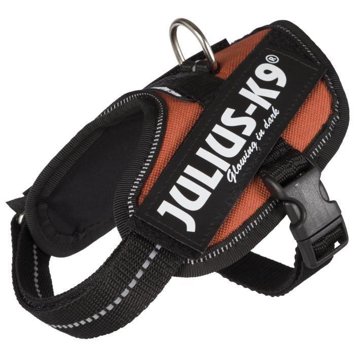 JULIUS-K9 Harnais Power IDC - Baby 1 - XS : 29-36 cm-18 mm - Orange cuivré - Pour chien