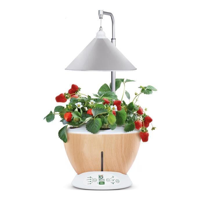 Kitchen Gardening Potager D Interieur Vittoria Achat Vente