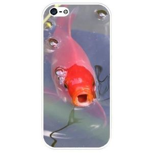 coque iphone 5 silicone poisson