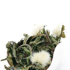 THÉ Thé au pissenlit 10g Organic Dandelion Tea Natural