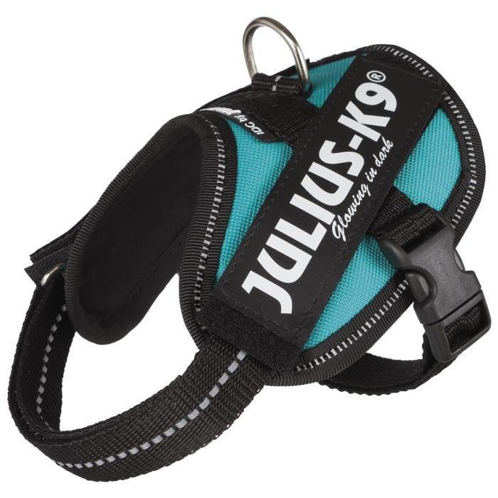 JULIUS-K9 Harnais Power IDC - Baby 2 - XS-S : 33-45 cm-18 mm - Pétrole - Pour chien