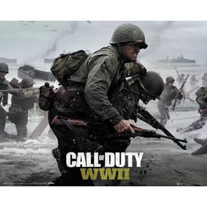 AFFICHE - POSTER Affiche Mini Call of Duty WWII Plague 40x50 cm