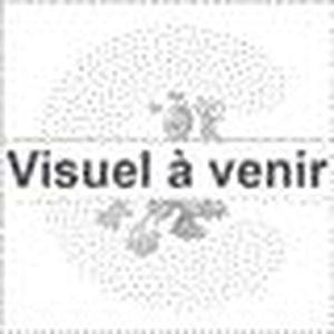 ENCEINTES ORDINATEUR NEC - 100012663