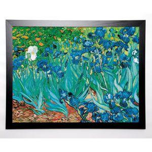 GOGH VAN VINCENT Image encadrée Iris 67x87 cm Vert