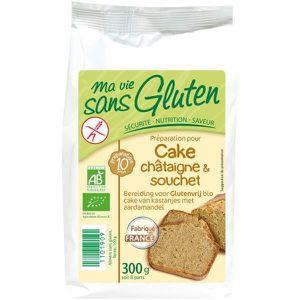 Gateau sans gluten pas cher