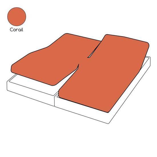 Drap housse TPR uni rouge corail coton 2x100x200   Tradilinge