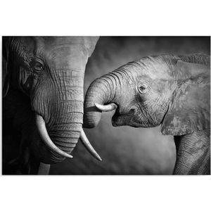 tableau toile tableau deco panel mural imprim 50x70 lphants - Cadre Elephant