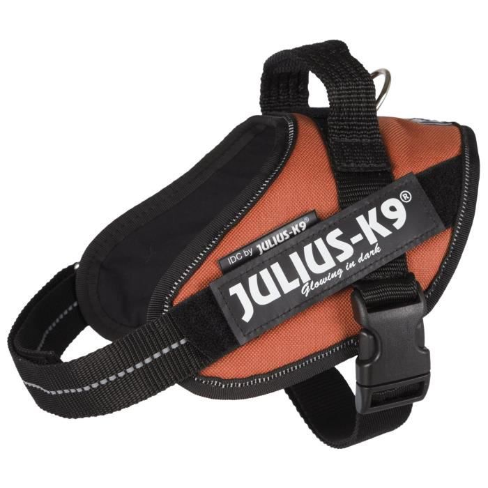 JULIUS-K9 Harnais Power IDC - Mini - M : 49-67 cm-22 mm - Orange cuivré - Pour chien