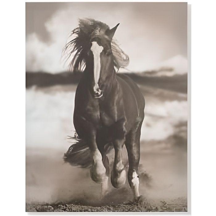 cadre cheval en noir et blanc achat vente cadre cheval en noir et blanc pas cher cdiscount. Black Bedroom Furniture Sets. Home Design Ideas