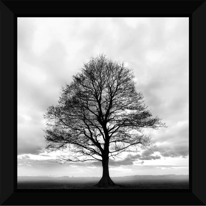 tableau encadr 60x60 arbre noir et blanc achat vente tableau toile cdiscount. Black Bedroom Furniture Sets. Home Design Ideas