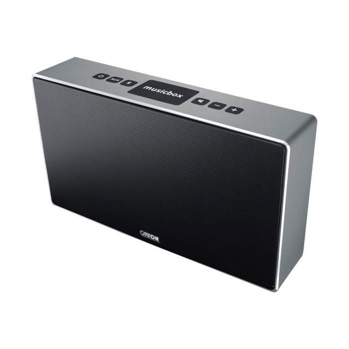 CANTON MusicBox ST Enceinte Bluetooth - Titan