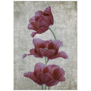 TABLEAU - TOILE Tableau déco Affiche contrecollée 50x70 - Fleurs r