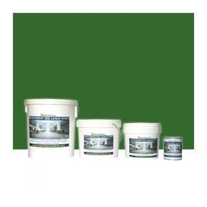 PEINTURE - VERNIS Peinture de Sol Laque Epoxy Vert Gazon 10 Kg Vert