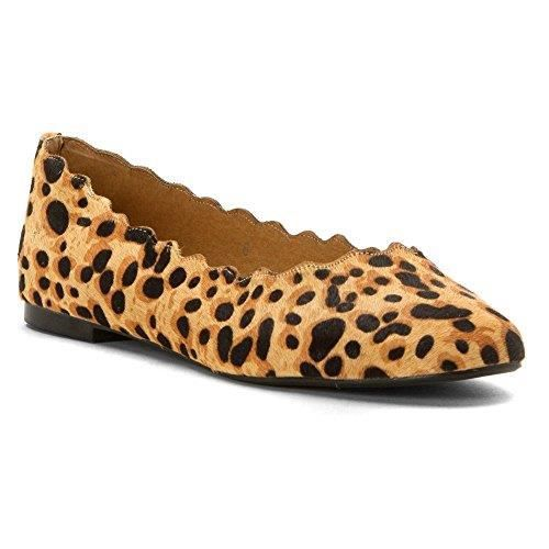 Femmes Athena Alexander TAFFY Chaussures Plates vlXgJF8Kl
