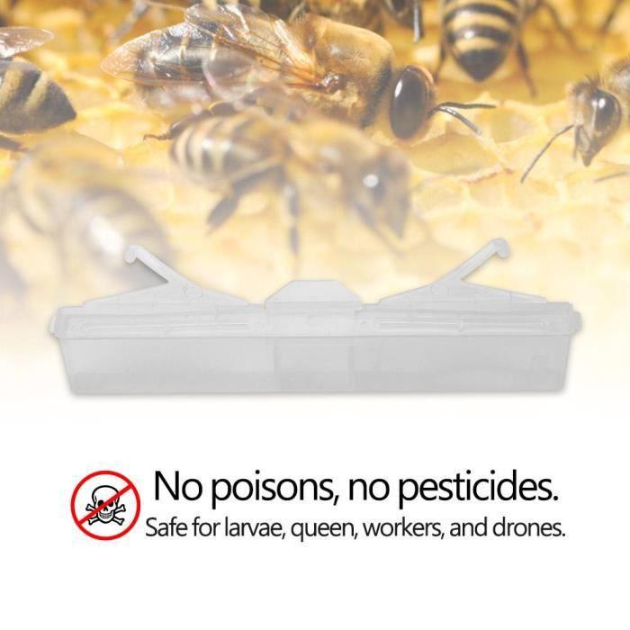 Piège À Insectes Coléoptères De Ruche En Plastique Réutilisable Outils Anti-poisons Sans Pesticides---shy