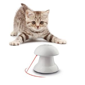 jouet chat absence