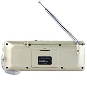 ENCEINTE NOMADE Portable Haut-parleurs Or Electronique L-88 Mini P