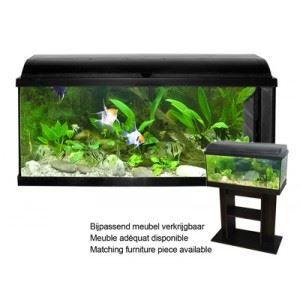 AQUARIUM Vadigran Aquarium Pacific (Litrage: 120 L