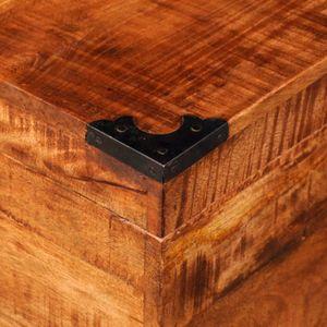 malle coffre bois brut achat vente pas cher. Black Bedroom Furniture Sets. Home Design Ideas