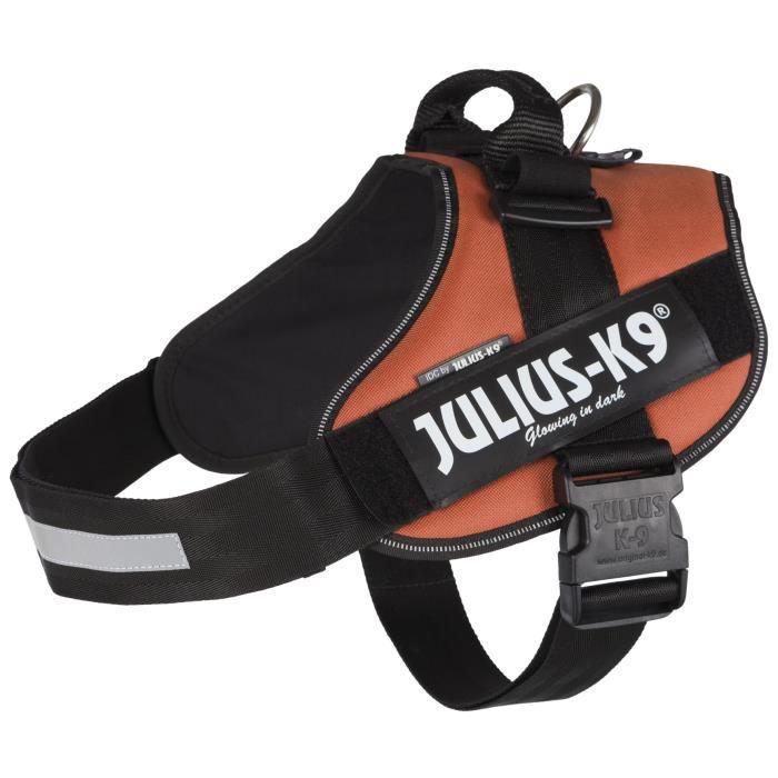 JULIUS-K9 Harnais Power IDC - 3 - XL : 82-115 cm-50 mm - Orange cuivré - Pour chien
