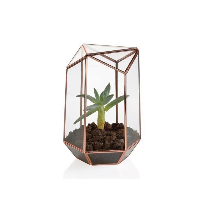 terrarium cuivre