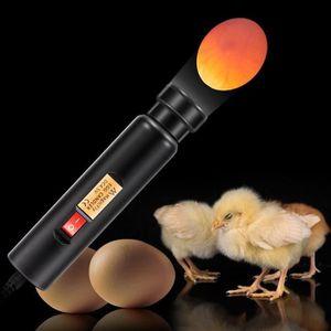 COUVEUSE - INCUBATEUR A Mire œuf LED à haute intensité lumière Cool, Egg