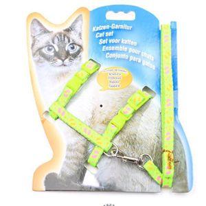 COLLIER Nylon Pet Cat Kitten Harnais Collier réglable lais