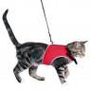 KIT ATTACHE - SELLERIE Harnais soft avec laisse pour chats