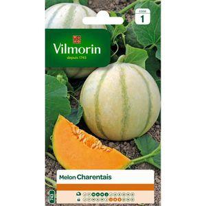 VILMORIN Melon Charentais