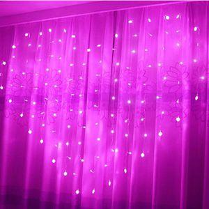 GUIRLANDE LUMINEUSE INT Rose lumière 2*1.5m LED lumière Chaîne décor de fe