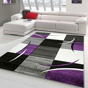 TAPIS Tapis DIAVIRGULE violet Tapis Moderne 200 x 290 cm