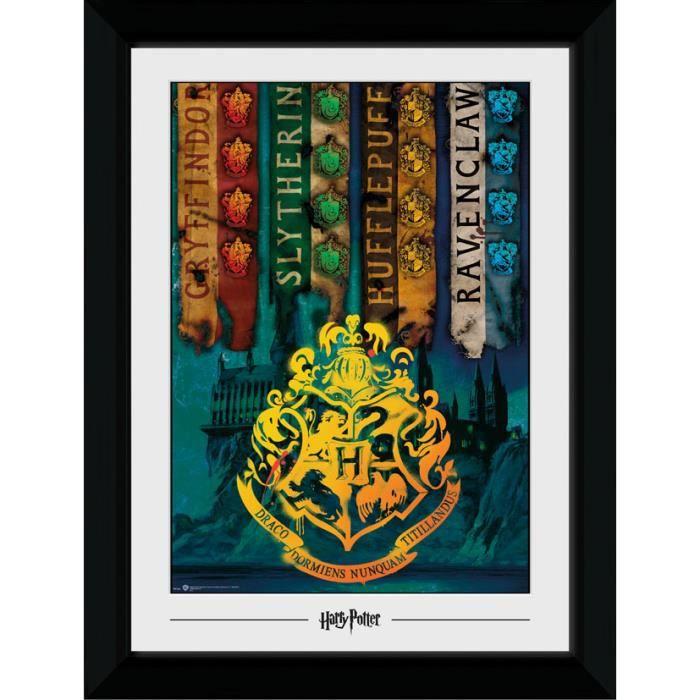 Photographie encadrée Harry Potter House Flags (30mm Black) 50 x 70 cm
