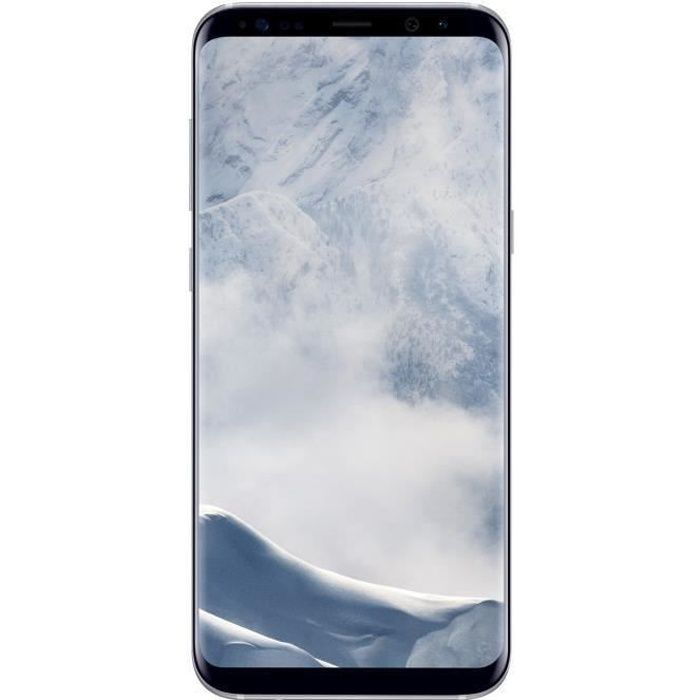 SMARTPHONE Samsung Galaxy S8+ Argent Polaire