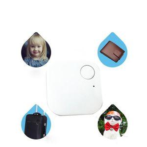 GPS PEDESTRE RANDONNEE  Smart Tag Finder Traceur Bluetooth Enfant pour ani