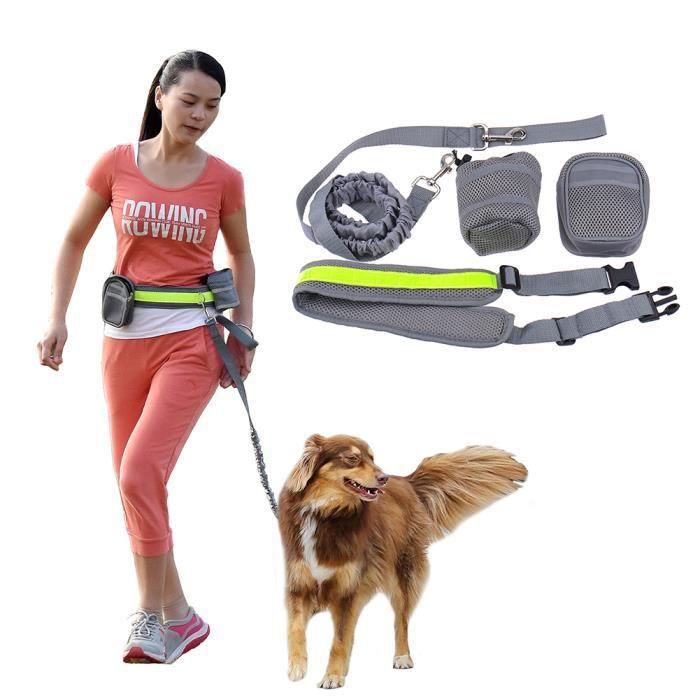 ceinture ventral avec laisse lani re pour chien accouple r glable de course promenade avec deux. Black Bedroom Furniture Sets. Home Design Ideas