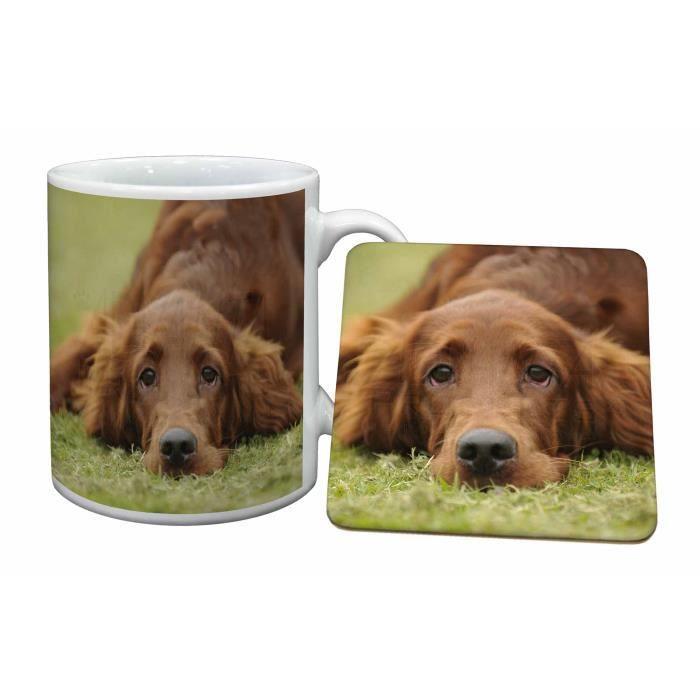 Setter Et Red De Tasse Cadeau Puppy Dog Russes Animaux Irlandais CeWQrExdBo