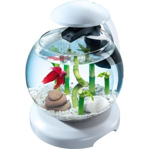 AQUARIUM Aquarium Tetra Cascade Globe Blanc