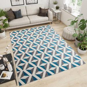 TAPIS TAPISO Maroko Tapis de Salon Design Moderne Gris B
