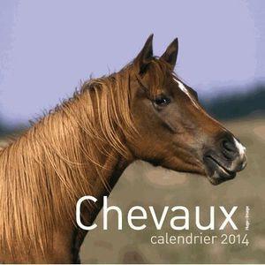 Calendrier chevaux achat vente calendrier chevaux pas for Calendrier mural pas cher