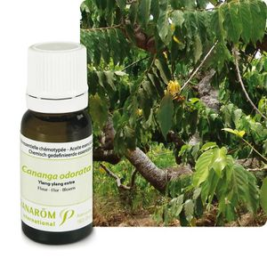 HUILE ESSENTIELLE PRANAROM Huile Essentielle Ylang-ylang Extra- 5 ml