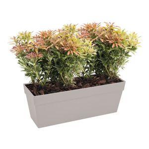 pot fleurs rectangulaire achat vente pot fleurs rectangulaire pas cher cdiscount. Black Bedroom Furniture Sets. Home Design Ideas