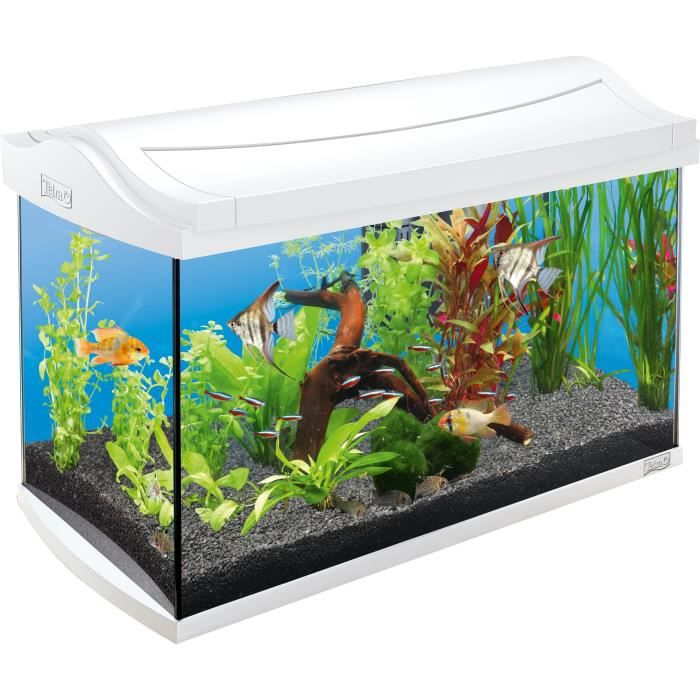 Tetra aquaart blanc 60l achat vente aquarium aquarium for Aquarium eau chaude