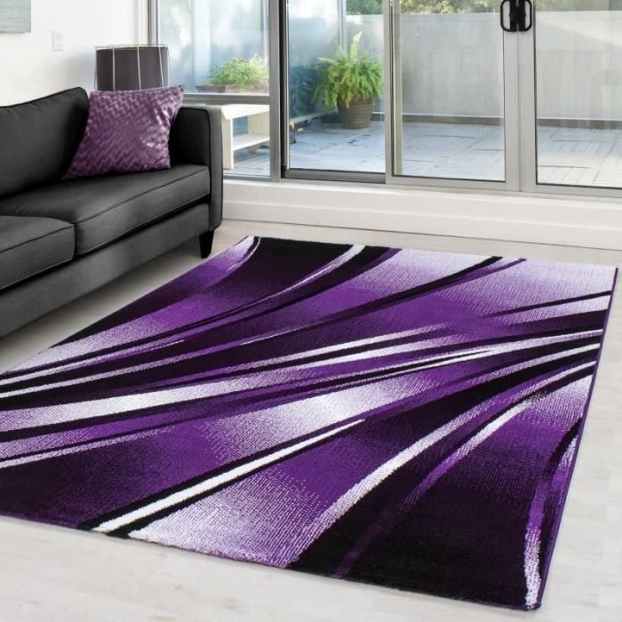 Tapis violet 160x230 - Achat / Vente pas cher