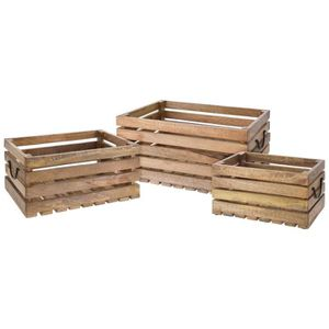 JARDINIÈRE - BAC A FLEUR Lot de 3 caisses en bois Mango avec manches en mét