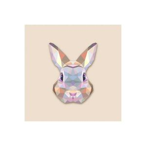 TABLEAU - TOILE Tableau Animaux Lapin 60X60