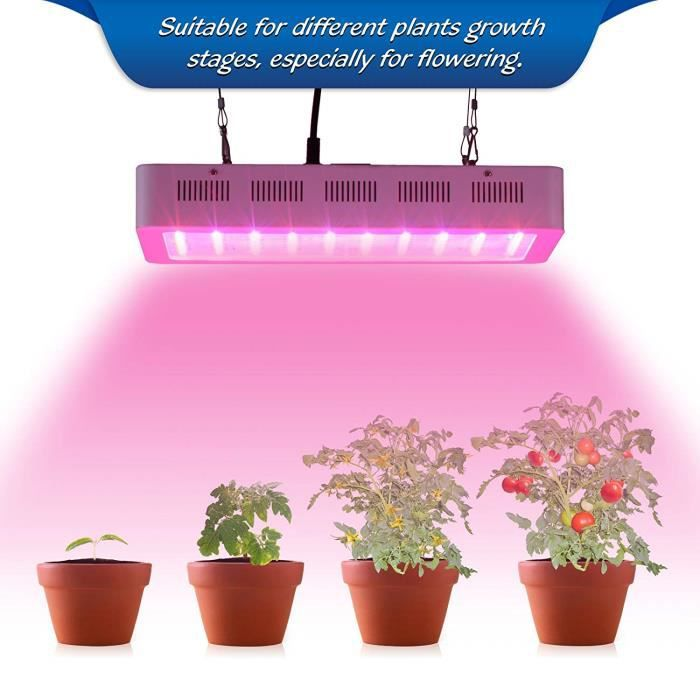 Lampe LED horticole 300W 100 LEDs lampe croissance pour chambre de ...