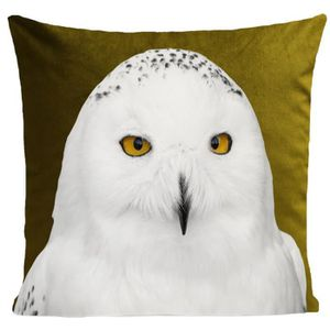 COUSSIN ARTPILO - Coussin SNOWY OWL Coton déperlant - Vert