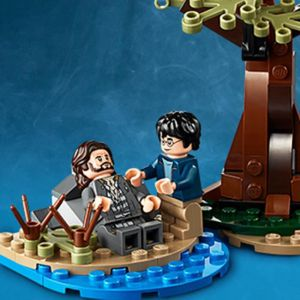 Potter Pas Cdiscount Achat Vente Lego Harry Cher erBodWCx